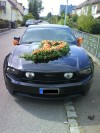 2010 Mustang von  Andy321